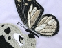 Uzorci veza - Leptir i pas detalj