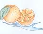 Uzorci veza - Pomorandža slika dizajn